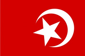 512px-Nation_of_Islam_flag