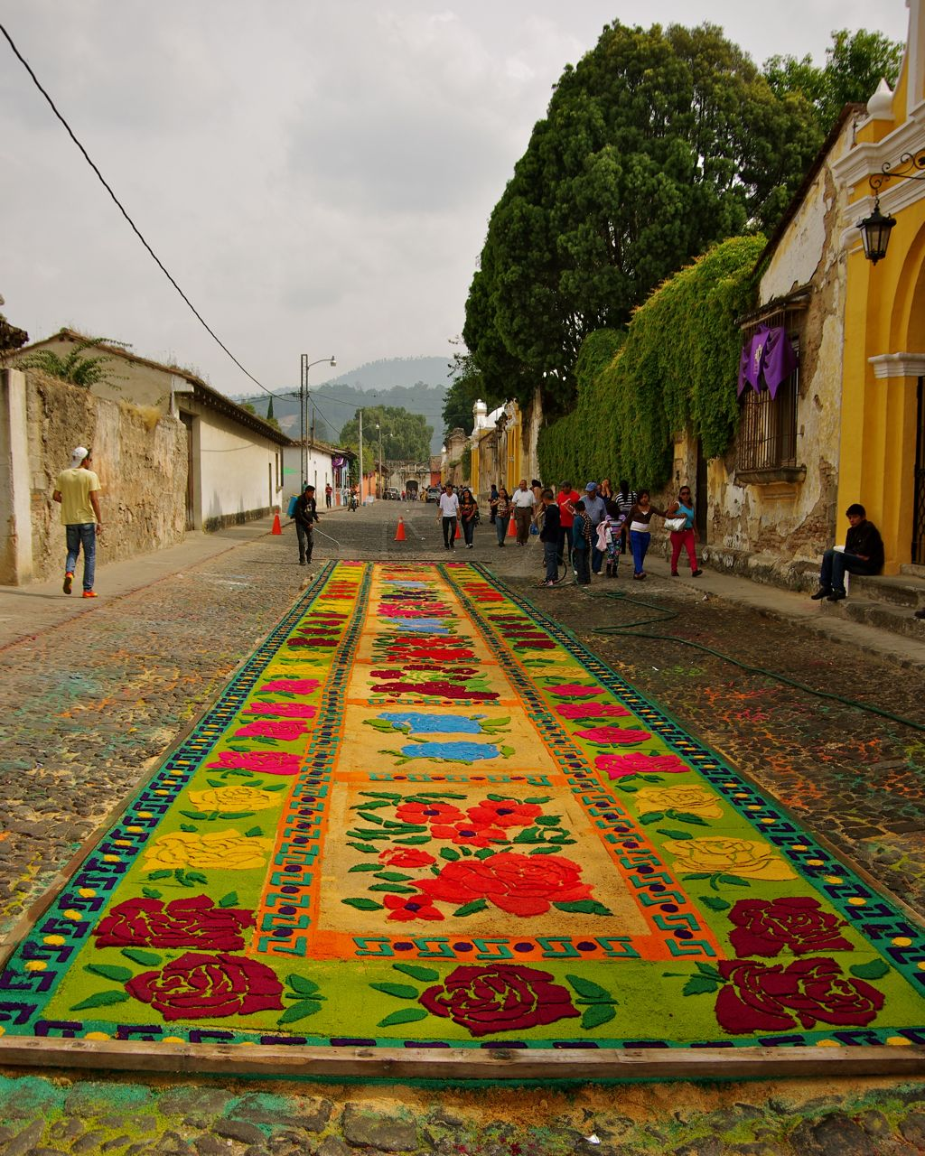 An alfombra before a procession.